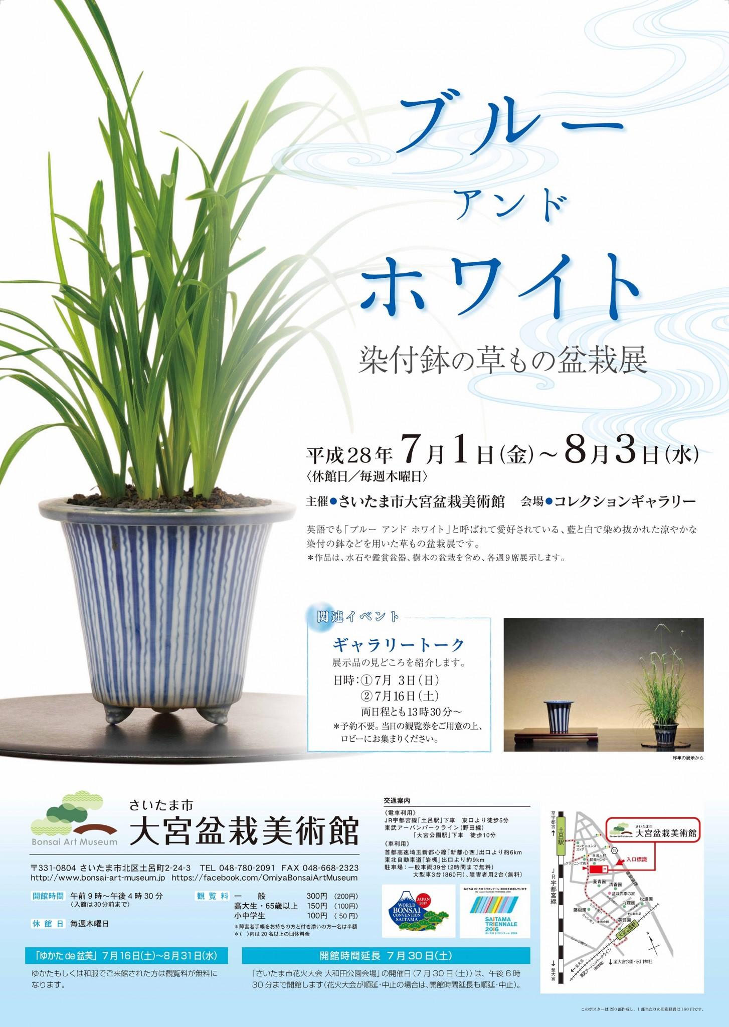 Blue and White―Kusamono (Grass) Bonsai and Porcelain Pot