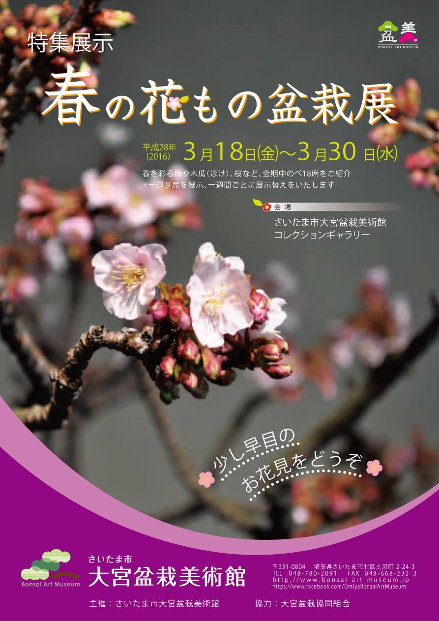 Flowering Bonsai Exhibition