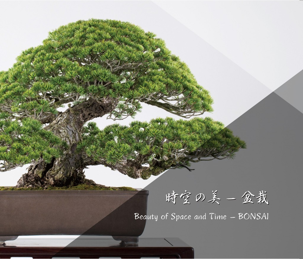 Bonsai Art Book : Beauty of Space and Time – BONSAI