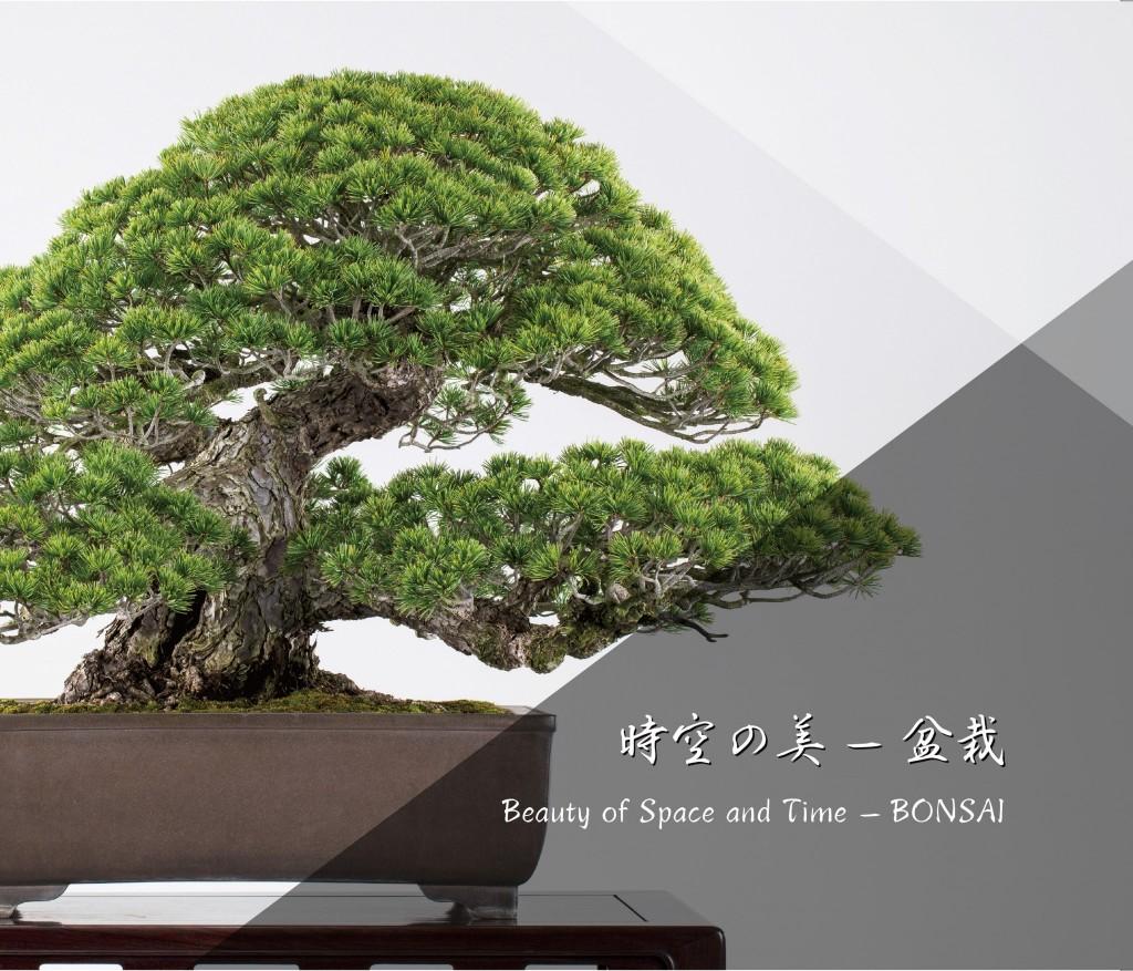 盆栽美術本「時空の美ー盆栽」