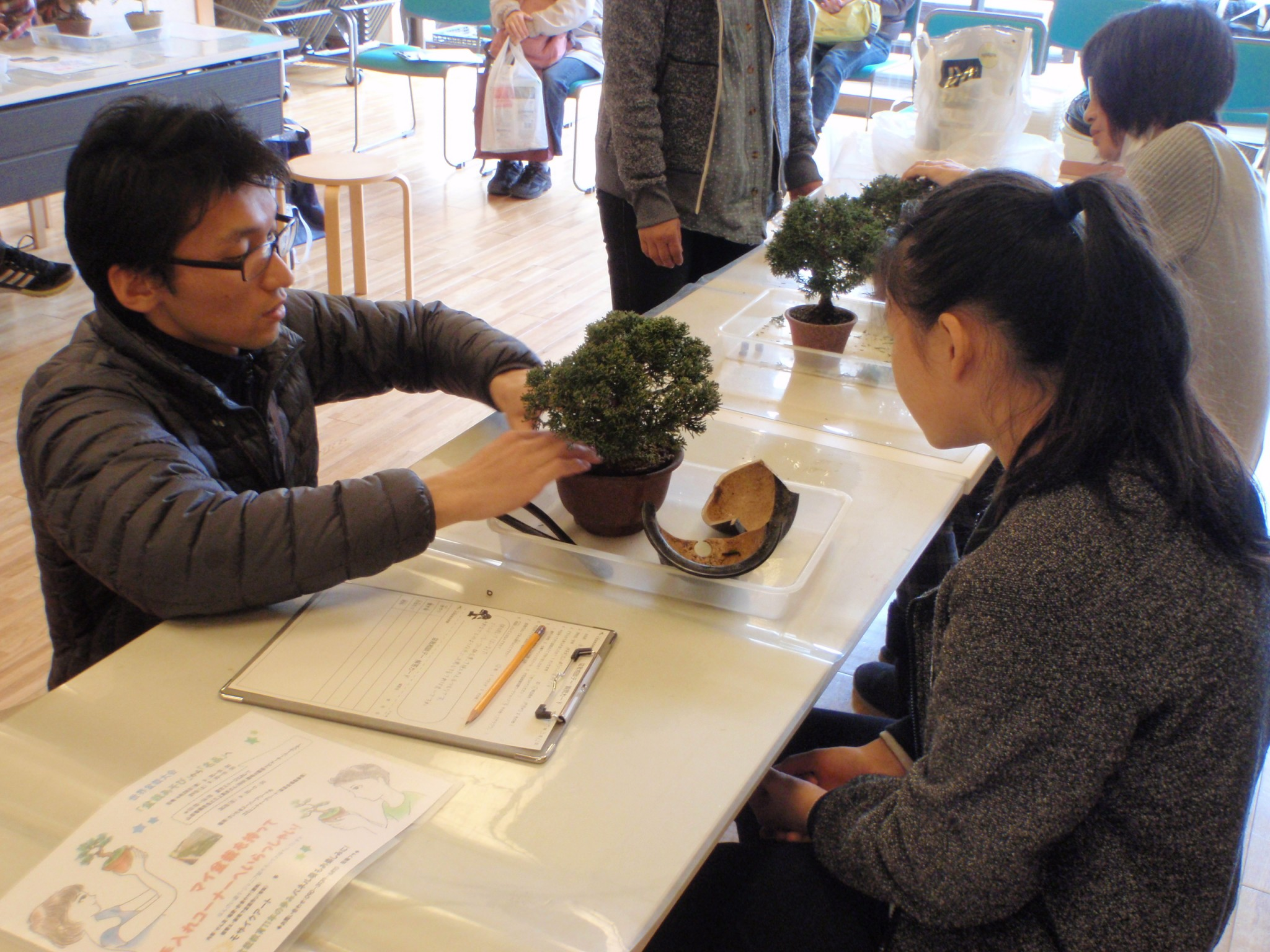 Bonsai Consultation Day for Kids and Senior High Students