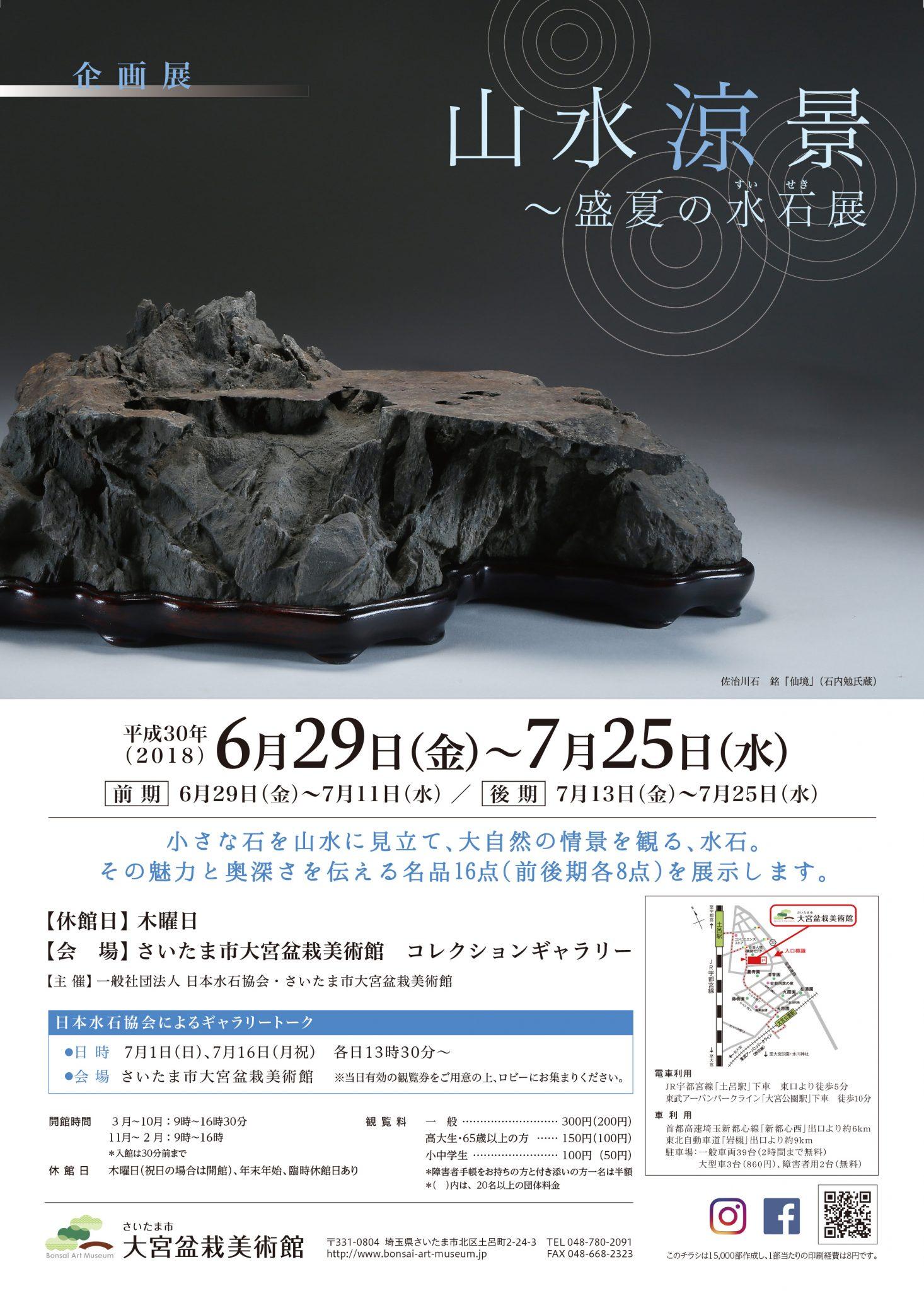 Suiseki-Miniature Landscape Stone