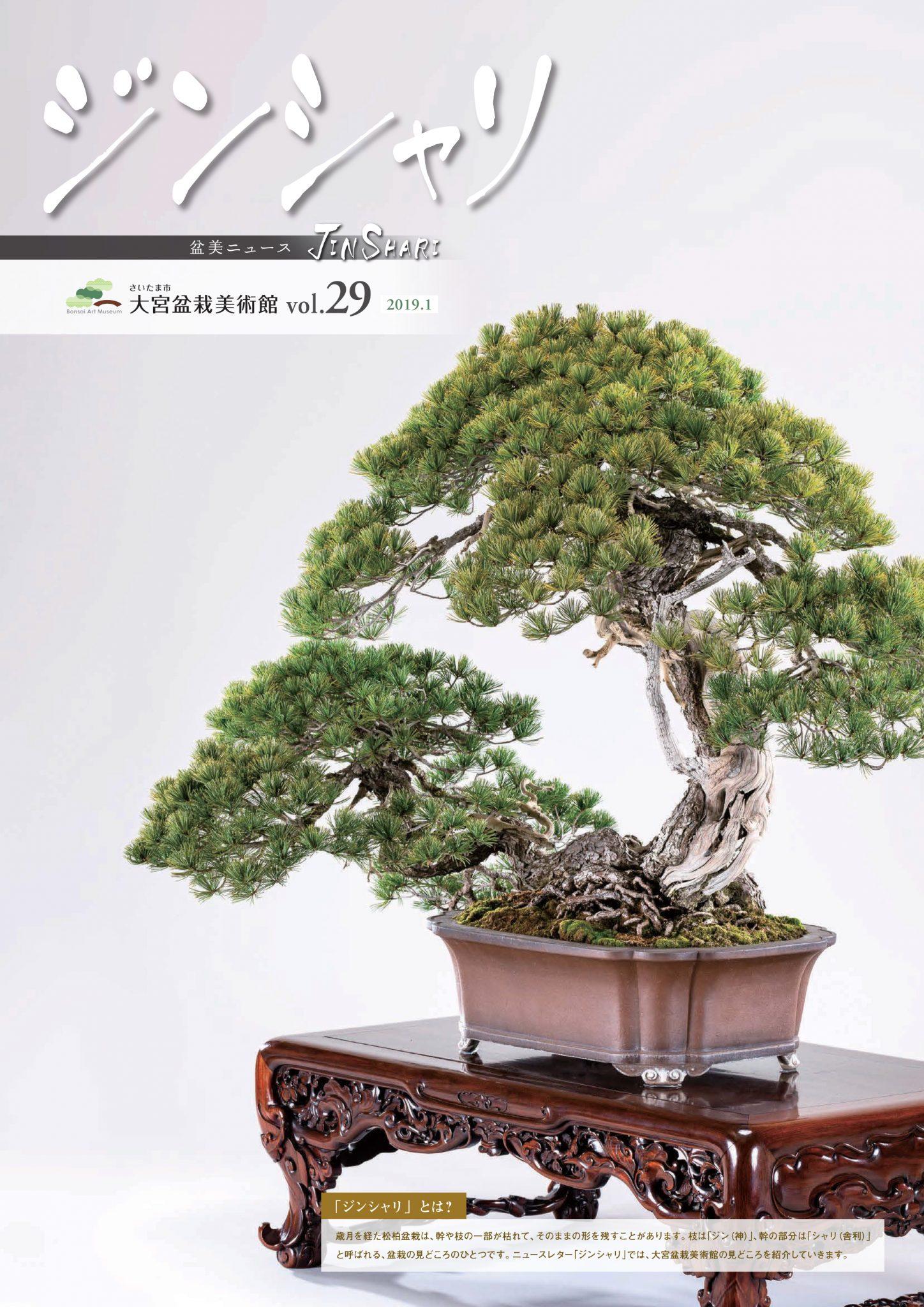Jinshari Vol.29
