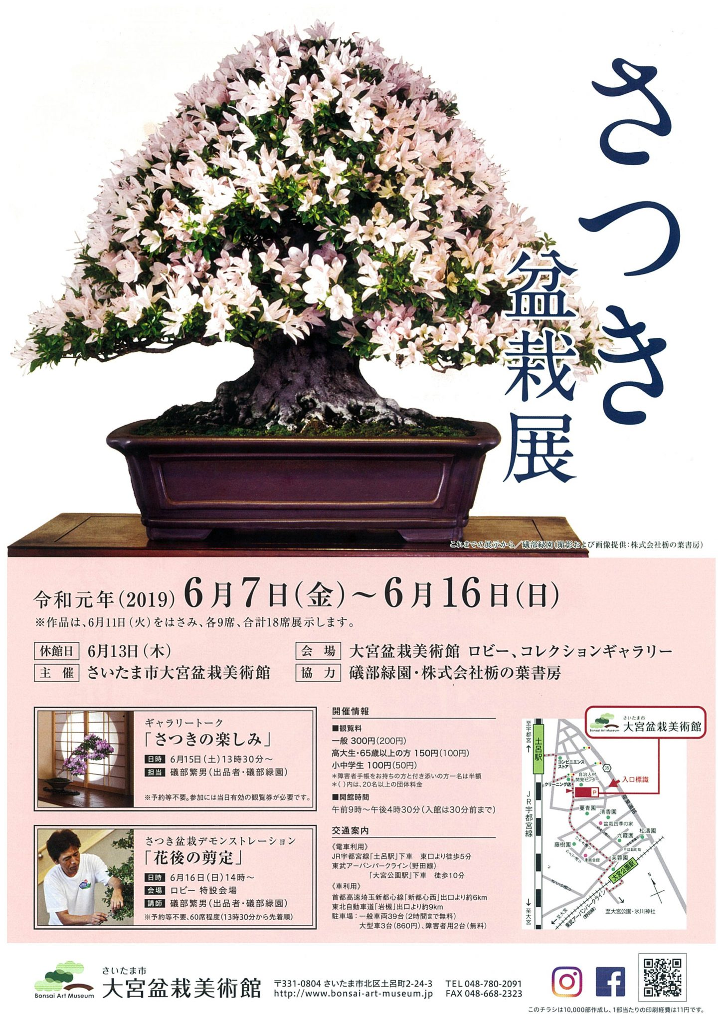 Satsuki Azalea Bonsai Exhibition