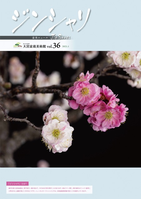 ジンシャリ Vol.36