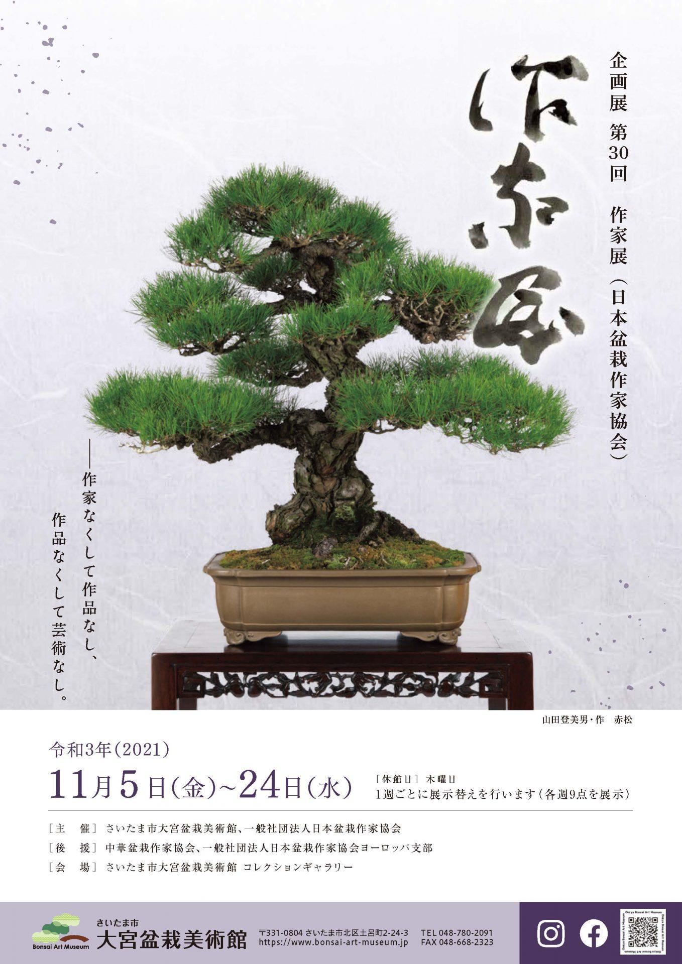 企画展 第30回 作家展(日本盆栽作家協会)